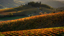 Tuscany Hiking Tour from Siena Including Wine Tasting, Siena, Hiking & Camping