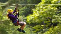 Big Island Kohala Canopy Zipline Adventure, Big Island of Hawaii, Helicopter Tours
