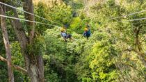 Big Island Kohala Zip and Dip Tour from Kona, Big Island of Hawaii, Ziplines