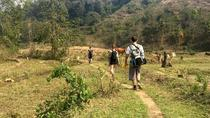 Full day Trekking to Village and Kuang si waterfalls