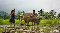 Living Land Farm Experience, Luang Prabang, Cultural Tours