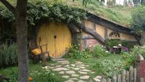 Hobbiton and Waitomo Glowworm Cave Day Tour - Private transportation, Auckland, Private Sightseeing ...