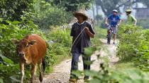 1 day Yangshuo Countryside Cycling Tour, Guilin, Bike & Mountain Bike Tours