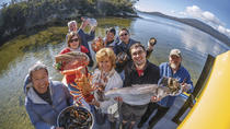 Fresh from the Ocean: Tasmanian Seafood Gourmet Full-Day Cruise Including Lunch, Hobart, Lunch...