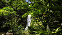 Small-Group Luxury Day Trip to Haleakala National Park and Hana Coast Rainforest, Maui
