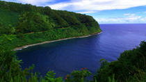 Small-Group Road to Hana Luxury Tour, Maui, Bus & Minivan Tours