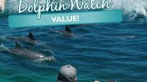Guided Port Stephens Morning Dolphin Watch Cruise, Port Stephens, Dolphin & Whale Watching