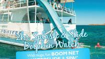 Port Stephens 2-hr Dolphin Watch Cruise Including Splash and Slide, Port Stephens, Dolphin & Whale ...