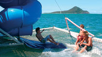 Port Stephens Dolphin Discovery Cruise, Port Stephens, Day Cruises