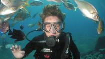 Snorkel and SCUBA Experience, Canary Islands, Scuba Diving