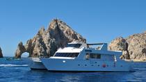Los Cabos Reef Snorkeling Cruise, Los Cabos, Lunch Cruises