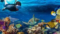 Snorkeling in Cancun, Cancun, Cultural Tours