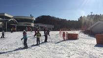 Full Day Ski Tour at Jisan Forest and Everland, Seoul, Day Trips