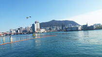 The most popular 17 places in Busan Full Package Tour from Seoul(2D1N), Busan, Multi-day Tours