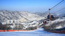 Vivaldi Park Ski Shuttle Bus Package, Seoul, Day Trips
