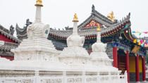 Private Tour: Xi'an Bike Adventure Including Tibetan Temple and Terracotta Warriors, Xian