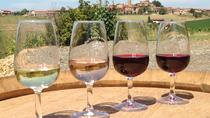 Beaujolais & Pérouges - From Lyon in small group tours, Lyon, Day Trips