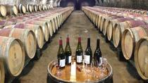 Beaujolais Crus Wines & Castles - Afternoon - From Lyon in small group tours, Lyon, Food Tours