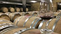 Northern Cotes du Rhone Discovery - From Lyon in small group tours, Lyon, Day Trips