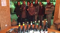 The Original Syrah - Morning - From Lyon in small group tours, Lyon, Wine Tasting & Winery Tours