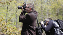 Central Park Photography Tour, New York City, Photography Tours