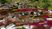 Caño Cristales 4-Day Tour from Medellin, Medellín, Multi-day Tours