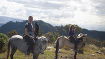 Horseback-Riding Adventure from Bogotá, Bogotá, Adrenaline & Extreme