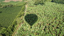 Hot Air Balloon Flight over the Colombian Coffee Region, Salento, Balloon Rides