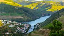 Day Trip to Douro, Porto, Day Trips