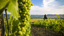 Vinho Verde Day Trip from Porto with Wine Tasting and Lunch, Porto, Day Trips