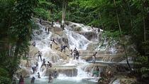 Private Tour From Ocho Rios To Dunn's River Falls, Ocho Rios, Private Sightseeing Tours