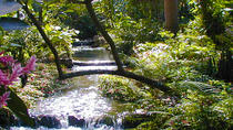 Private Tour From Ocho Rios To Konoko Falls And Garden and Shopping, Ocho Rios, Private Sightseeing...