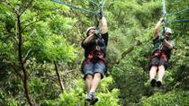 Ixpanpajul Natural Park Zipline and Eco-Adventure Tour from Flores, Flores, Ziplines