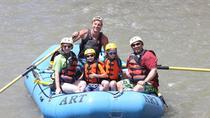 Mild Cottonwood Family Float, Buena Vista, 4WD, ATV & Off-Road Tours
