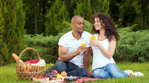 Central Park Picnic with Full Day Bike Rental, New York City, Bike & Mountain Bike Tours