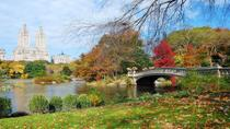 Highlights of Central Park Walking Tour, New York City, Food Tours
