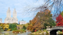 Wandeltocht met hoogtepunten van Central Park, New York City, Walking Tours