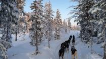 Sit Back and Relax Morning Tour, Sweden, 4WD, ATV & Off-Road Tours