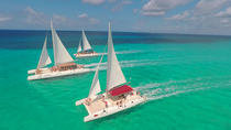 Full-Day Saona Island Catamaran Tour, Punta Cana, null