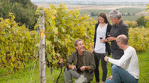 Small-Group Quebec Wine Tour from Montreal with Optional Gourmet Lunch and Cheese Tasting, モントリオール