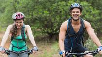 Yarra Valley Active Adventure with Hike Bike and Wineries, Melbourne, 4WD, ATV & Off-Road Tours