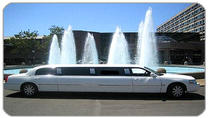Private Arrival Transfer: Toronto International Airport to Niagara Falls, Toronto