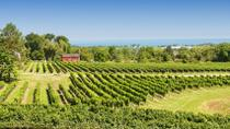 Private Tour: Niagara Falls Wineries, Niagara Falls & Around