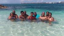 Land and Sea Sightseeing Tour from Nassau, Nassau, Half-day Tours
