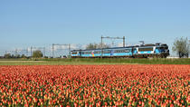 Amsterdam Sightseeing Dinner Train met 4-gangenmenu en drankjes, Amsterdam, Dining Experiences