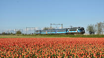 Sightseeing Train with Henri Willig cheese & Heineken beers, Amsterdam, Wine Tasting & Winery Tours