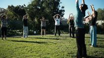 Private Chinese Qi Gong Workshop, Shanghai, Cultural Tours