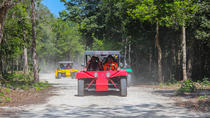 BUGGIE AND CENOTE TOUR FROM PLAYA DEL CARMEN, Playa del Carmen, 4WD, ATV & Off-Road Tours