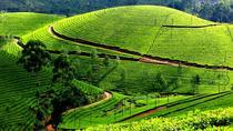 3 Days Kerala Tour Discover Tea Gardens and adventure through the hills of Munnar from Kochi,...