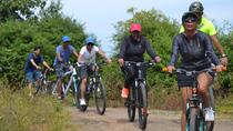 All inclusive Old City Cycle Tour in Udaipur, Udaipur, City Tours